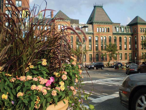 One of the flower planters installed by the Lower Mills Merchants Association sits at the corner of Washington Street and Dorchester Avenue.