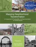 Mapping Neighborhood Transformation Report