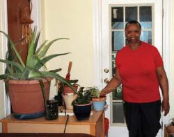 Elnora Thompson's green thumb has been a God-send for the Nightingale Community Garden, Dorchester's largest.