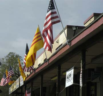 Flags along the Ave.