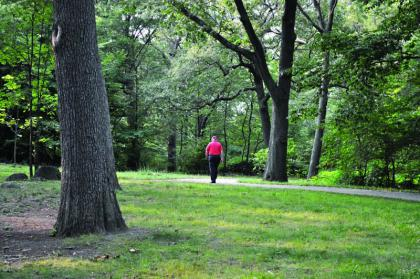 DOT PARK : Ed Forry retraced his steps on a quiet path in Dorchester Park on Tuesday evening. This is the same path on which Forry was accosted on Sunday afternoon. 	Bill Forry photo