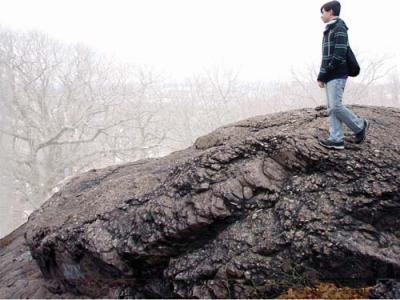 An outcropping of Roxbury Puddingstone on top of Savin Hill. 	Photo by James Hobin