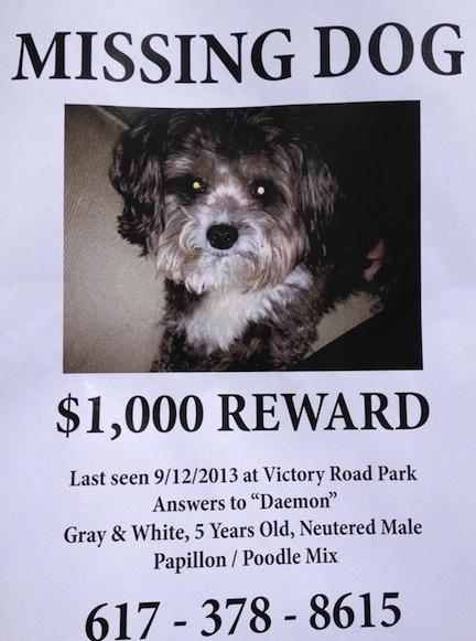 ... offer $1,00... Missing Dog