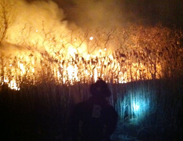 Neponset brush fire. Photo by Boston Fire.