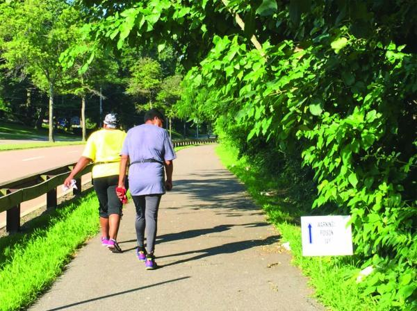 Poison Ivy that hangs over a portion of the Neponset Greenway near Mattapan Square is a hazard to walkers and bicyclists. Lee Toma photo.